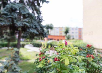 koscianska-spoldzielnia-mieszkaniowa-region-I-24