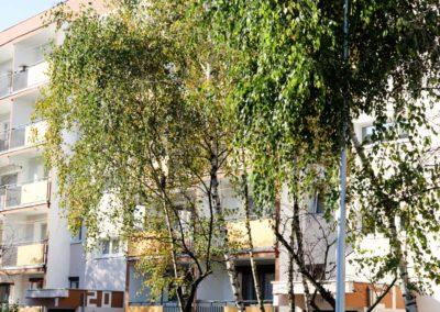 koscianska-spoldzielnia-mieszkaniowa-rejion-III-81